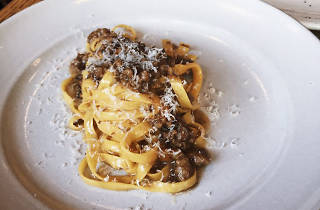 Tagliatelle with oxtail ragu at Cotogna