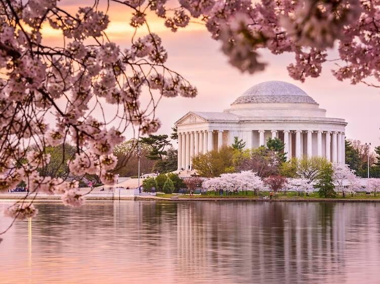 Washington, DC: 111.3 puntos