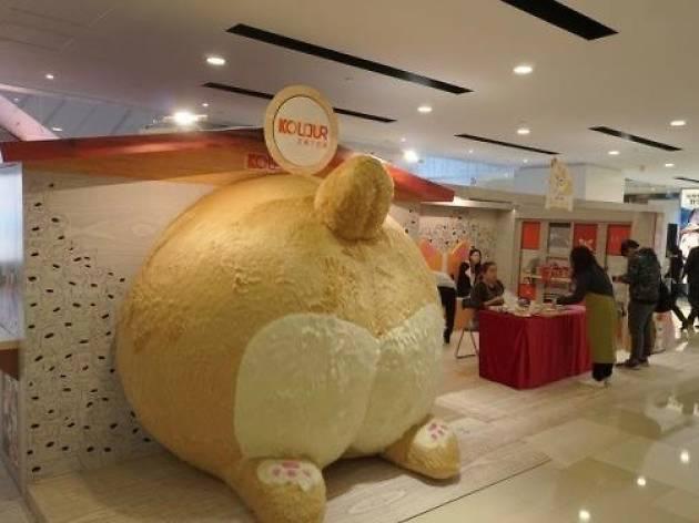 Kolour Tsuen Wan corgi