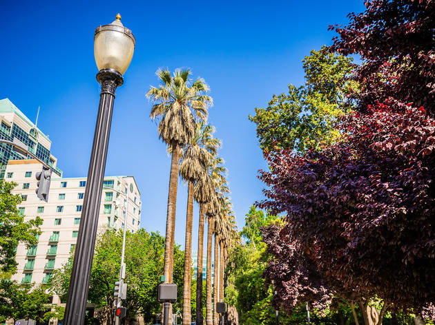 The ultimate guide to Sacramento