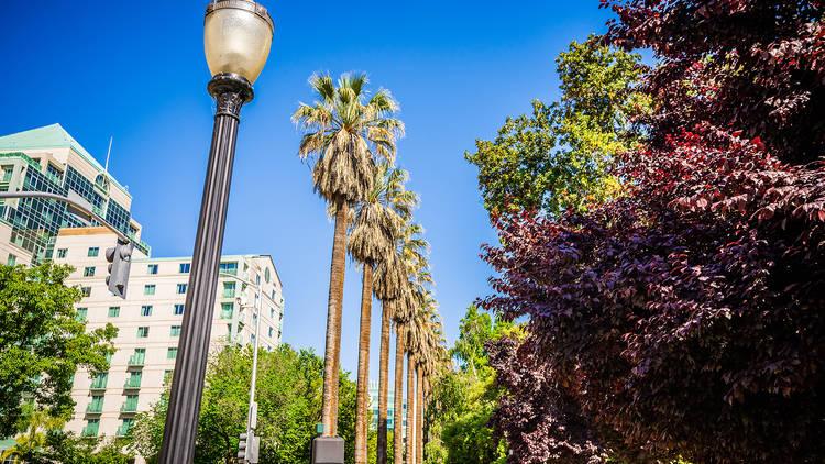 The ultimate guide to Sacramento