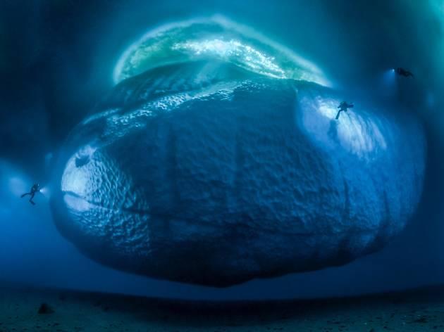 (Photograph: The ice monster, Laurent Ballesta)