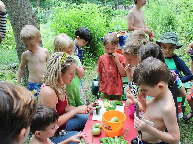 The Nature Place Day Camp Open House