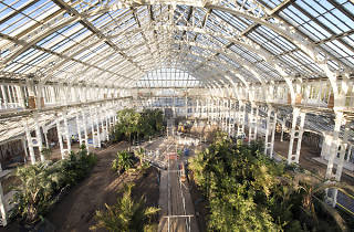 7 amazing indoor gardens and green spaces in London