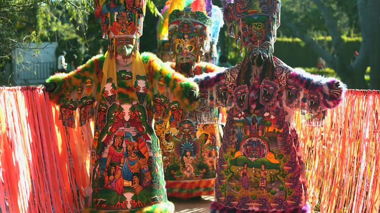 Experiencias en el Carnaval de Bahidorá