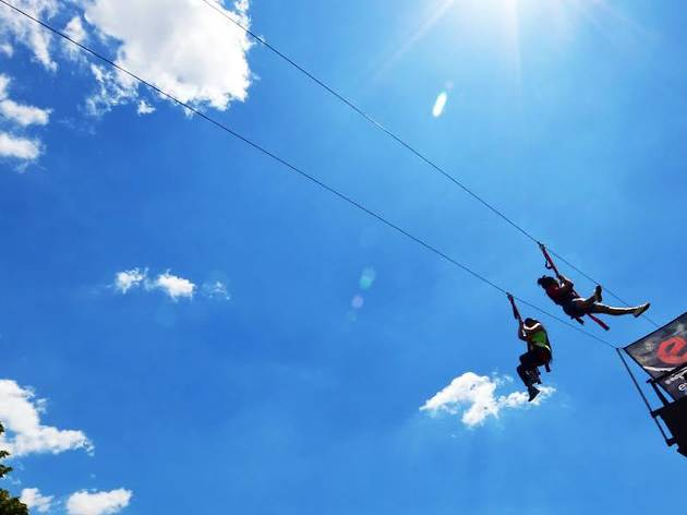 Go zip-lining at Governors Island