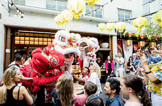 Chinese New Year dragons on Kensington Street