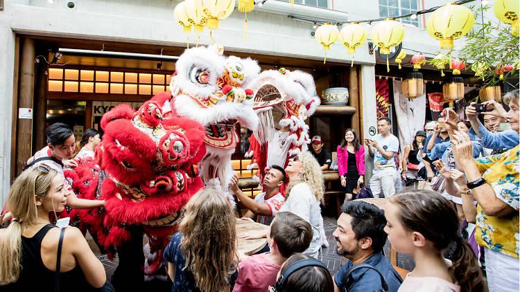 Chinese New Year dragons on Kensington Street