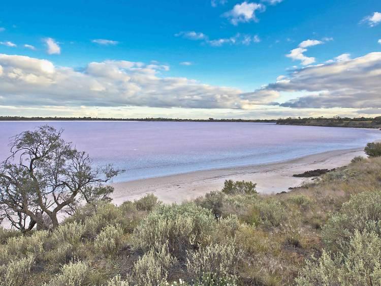 Pink lakes in northwest Victoria