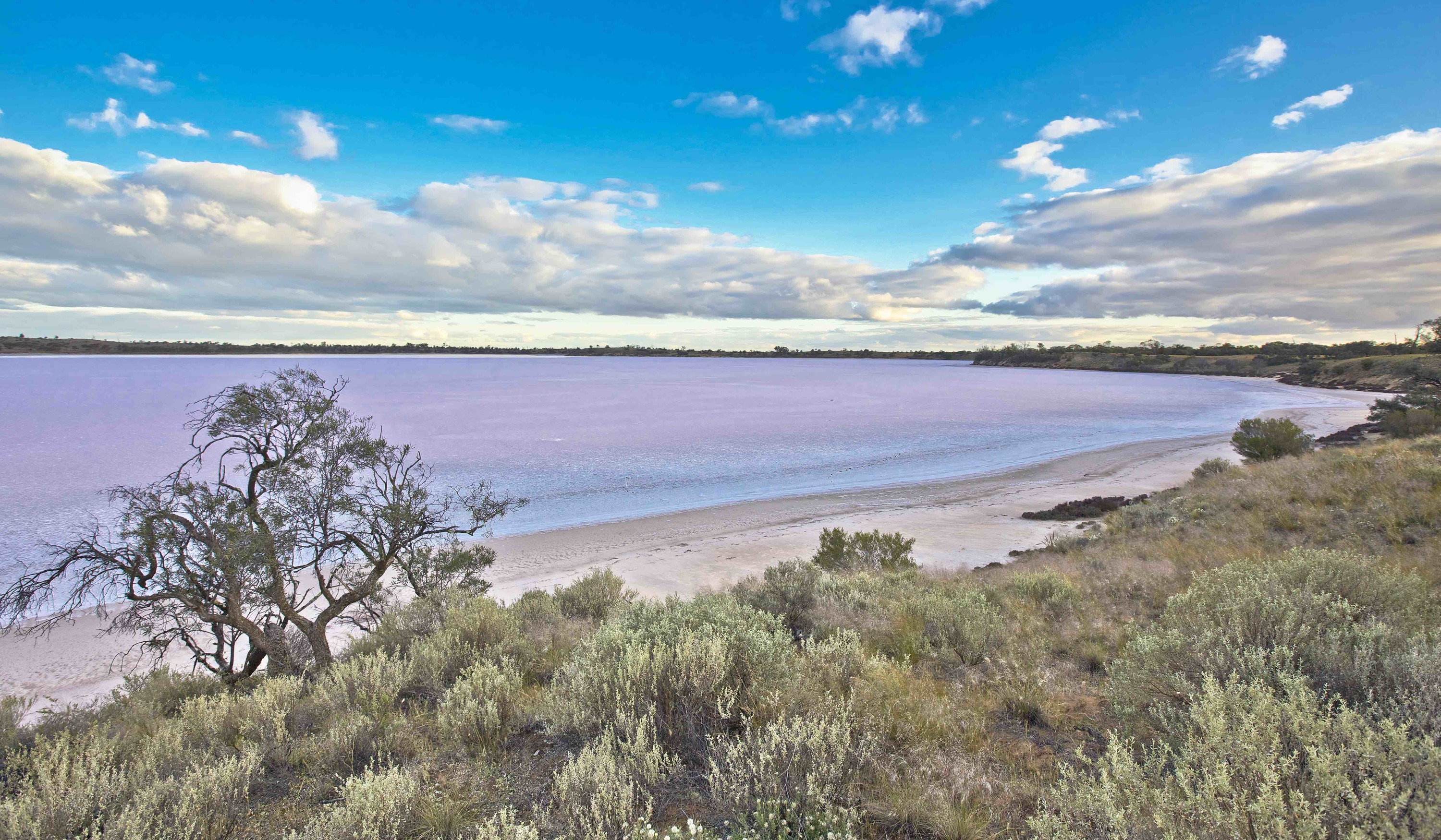 Pink lakes in northwest Victoria
