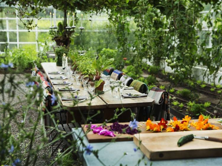12 can't-miss restaurants in Stockholm