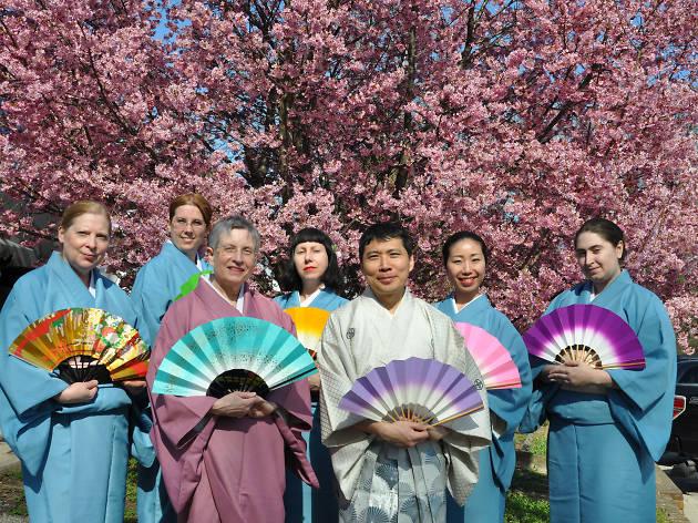 Subaru Cherry Blossom Festival