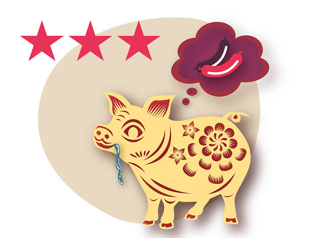 Pig zodiac 2018