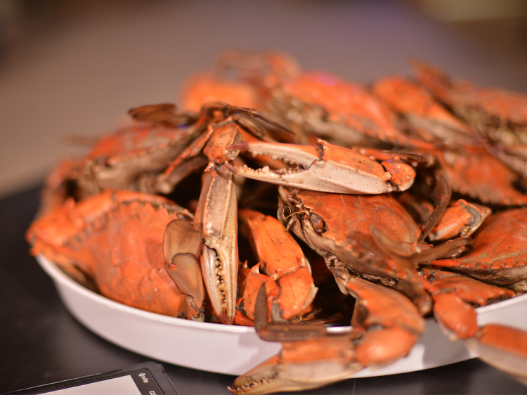 10 food and drink adventures to add to your Louisiana bucket list