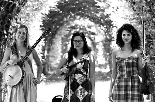 The Dead Sea Sisters Band