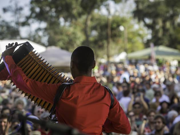 Cedric Watson performs during Festival Acadiens et Creoles in Lafayette, La.Cedric Watson performs during Festival Acadiens et Creoles in Lafayette, La.