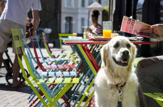London for Londoners - Outsider Tart, Chiswick