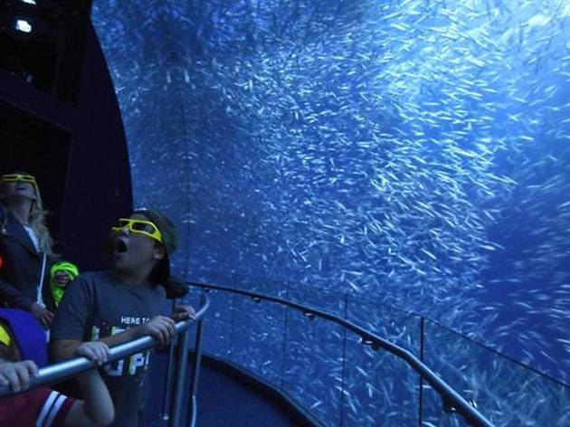 Time Out Kids Day at National Geographic Encounter: Ocean Odyssey