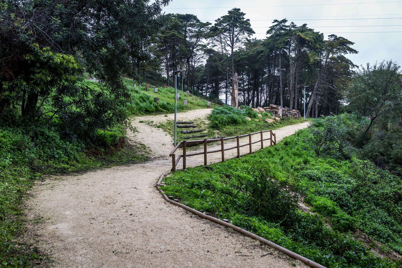 parque fonte das avencas