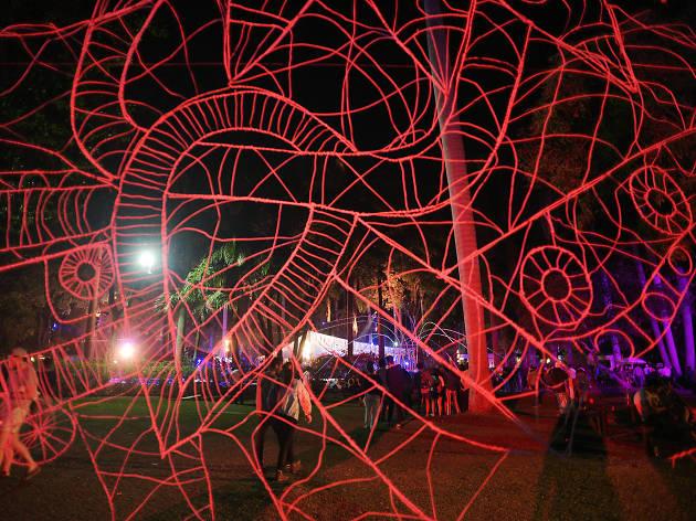 Instalaciones en el Carnaval de Bahidorá
