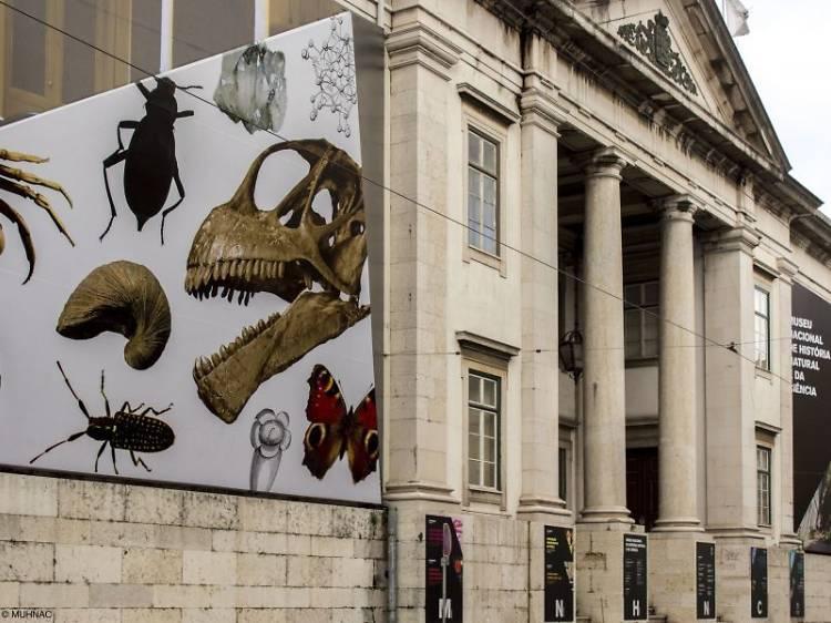 Museu Nacional de História Natural e da Ciência
