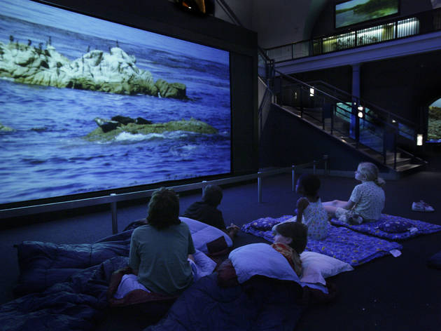 Museum sleepovers for kids