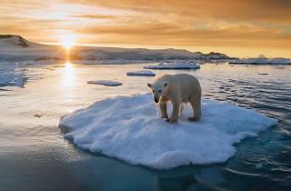 Keith Ladzinski: A Fragile Planet