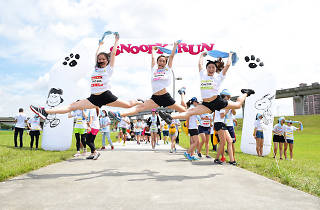 Snoopy Run
