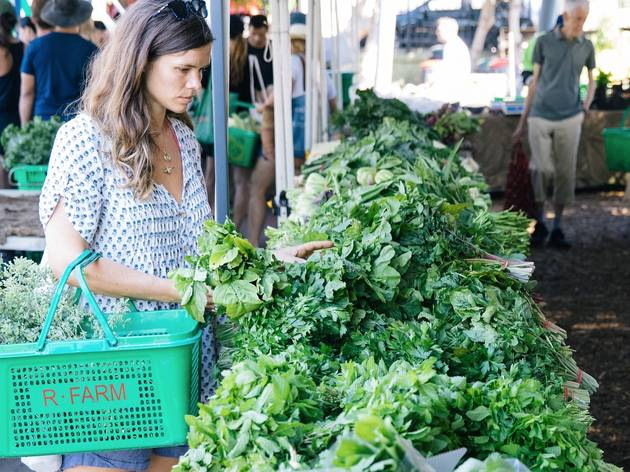 Person buying fresh greens at Bondi Farmers Markets