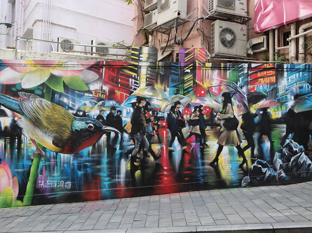 Dan Kitchener Elgin Street