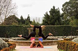 Festival junta a comunidade yoga