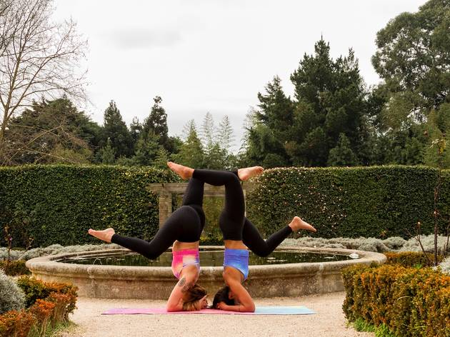 Festival junta a comunidade ioga