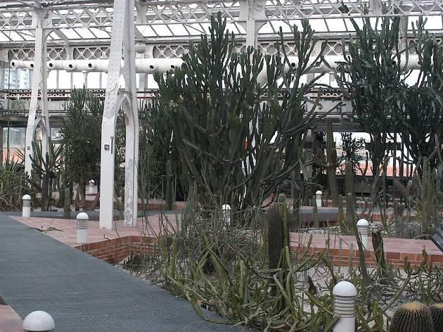 Invernadero palacio de cristal Arganzuela