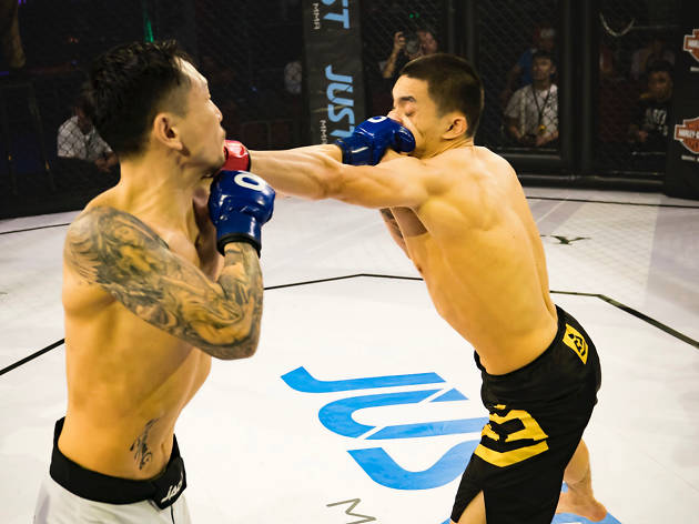 JUST MMA. Photo by Anthony Lau