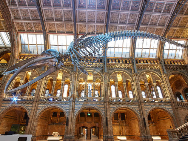 Museum Of Natural History Tickets Online