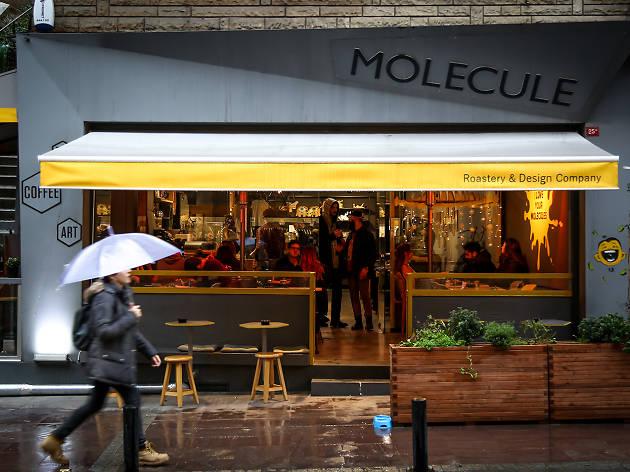 Molecule Coffee