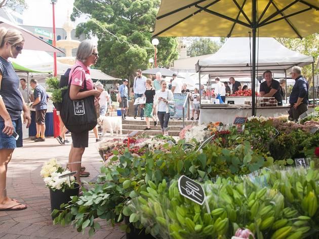 Plant stalls at Northside Markets