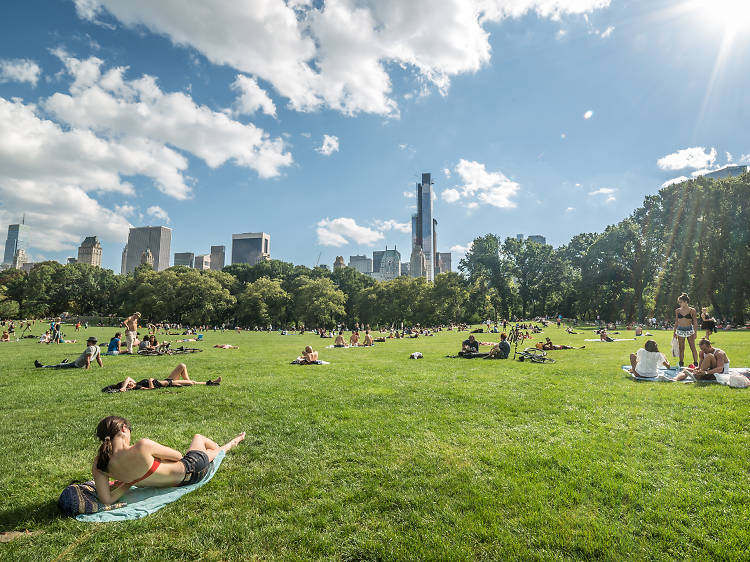 Check out the best things to do outside in New York