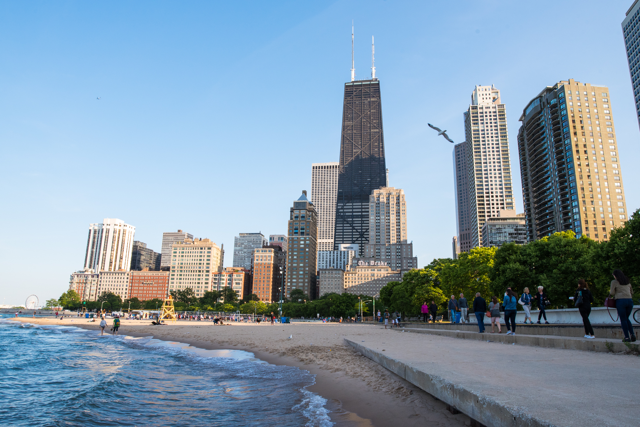 The 31 best things to do in Chicago