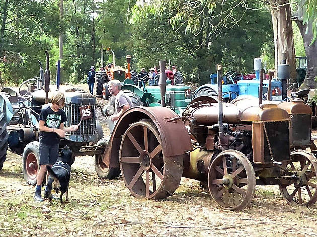 Bullarto Vintage Tractor Pull
