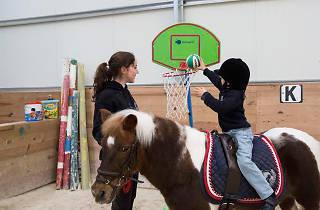 Pony Club do Porto