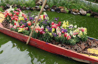 (Festival Flores y Jardines FYJA)