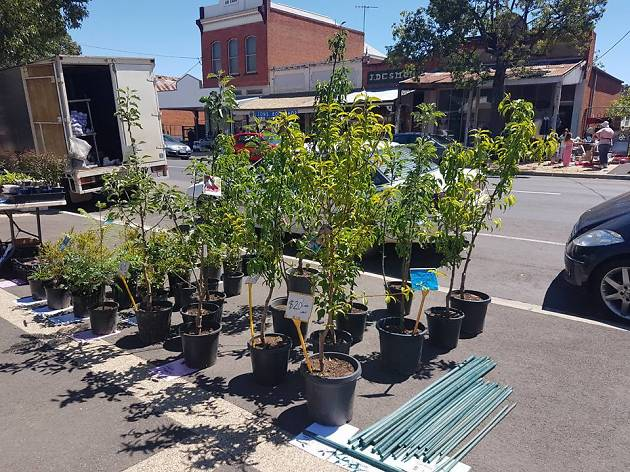 Dunolly Community Market