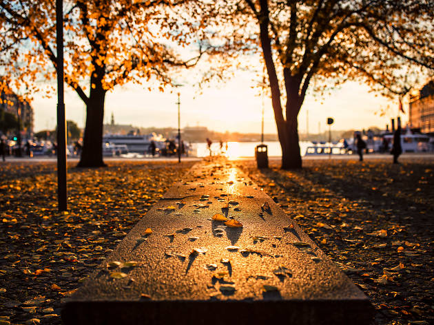 Autumn in Stockholm