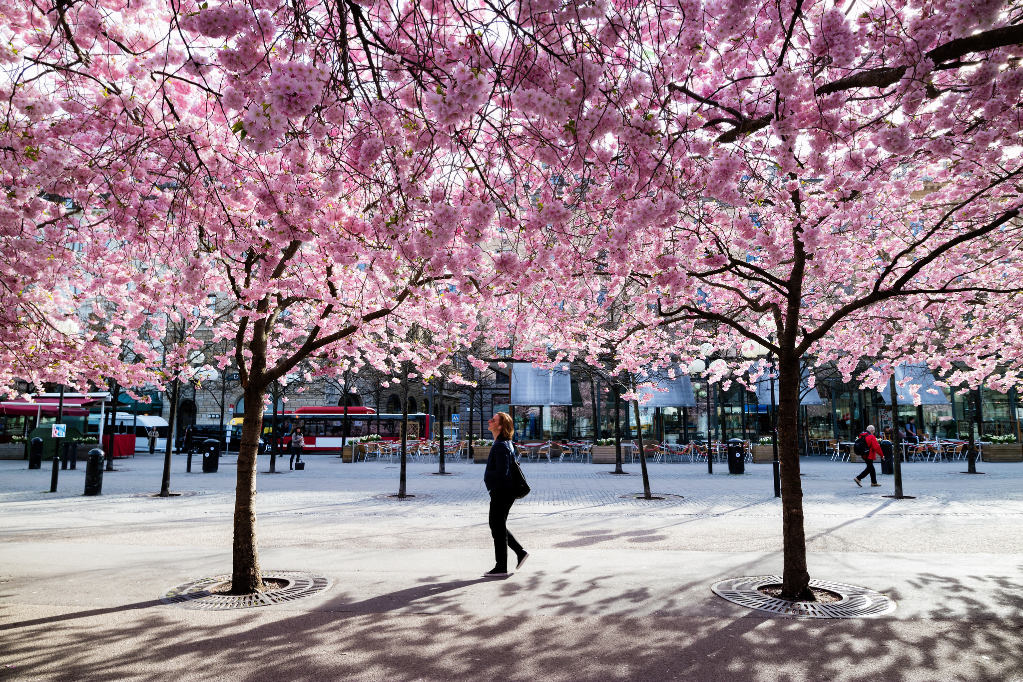 The best time to visit Stockholm