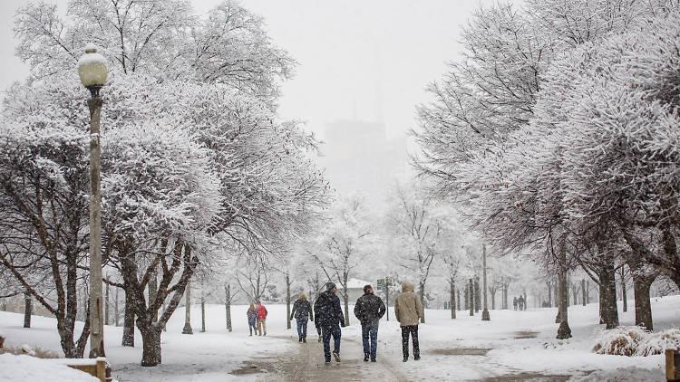 Snow in Grant Park