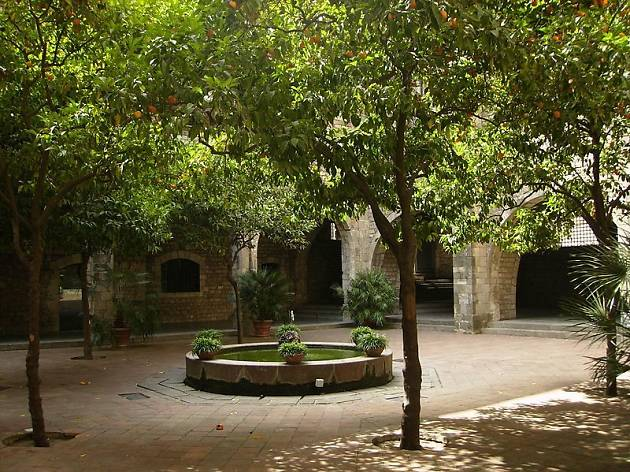 Els jardins del museu