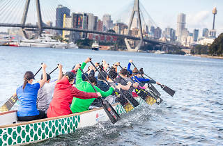 Competitors paddle in a dragon boat