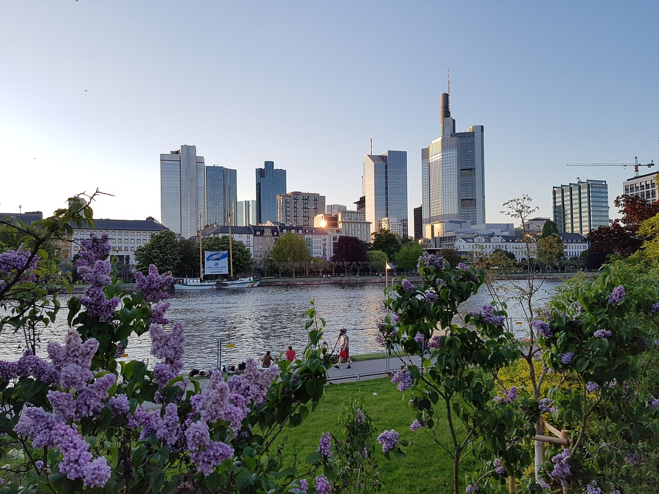 Summer in Frankfurt