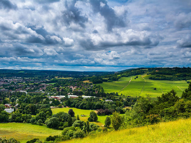 Box Hill - best day trips from London 2018